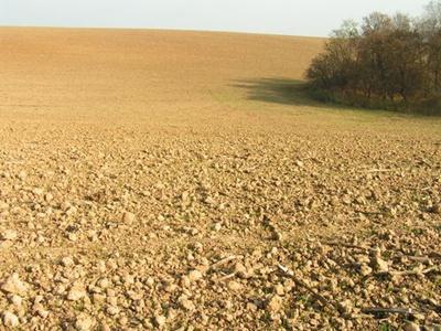 Hová lett a magyar föld?
