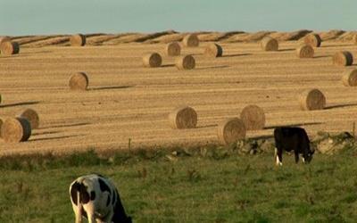 Csúcsra emelkedett a beruházási kedv az agráriumban