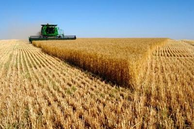 A kárt szenvedett gazdáknak több támogatás jár