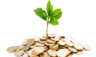 Minden második kisvállalkozás beruházásra készül