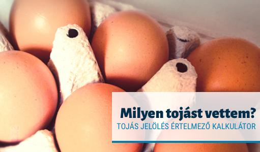 tojás kódok kalkulátor szamoldki.hu