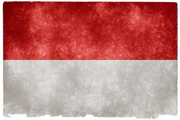 Az indonéz partnerségé a jövő?