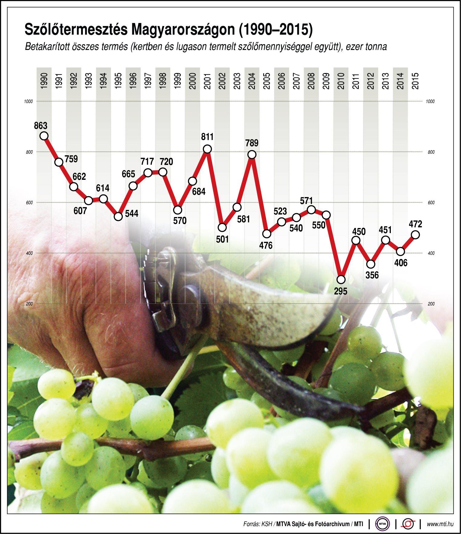 Ennyi szőlőt termel Magyarország - ábra