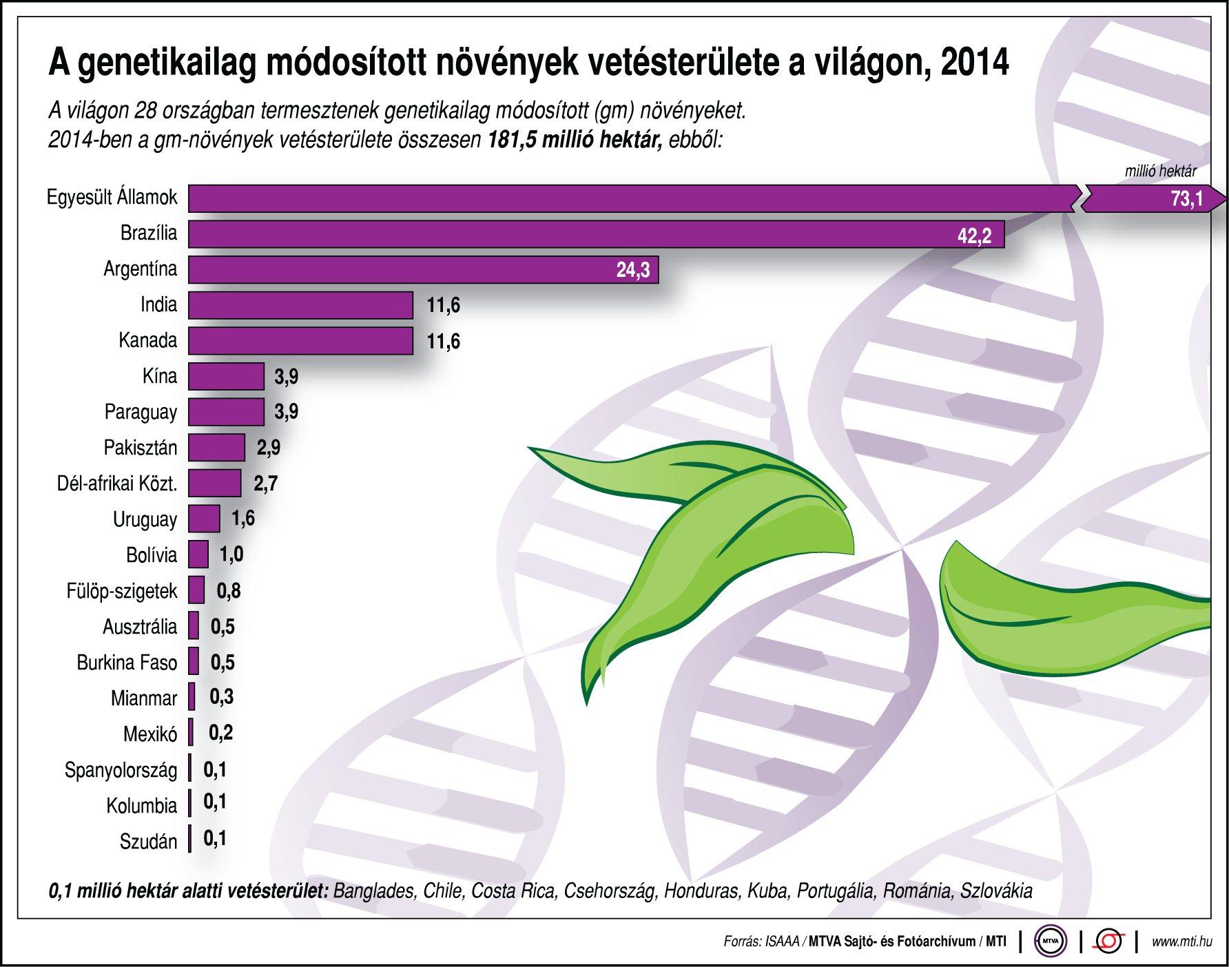 Itt termelik a legtöbb genetikailag módosított növényt