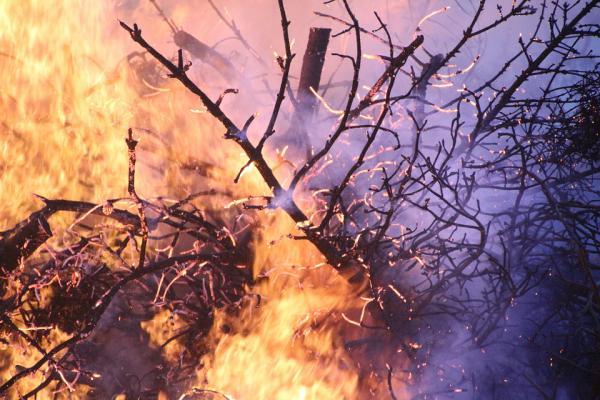 Erdőtüzek pusztítanak a Horvátországban