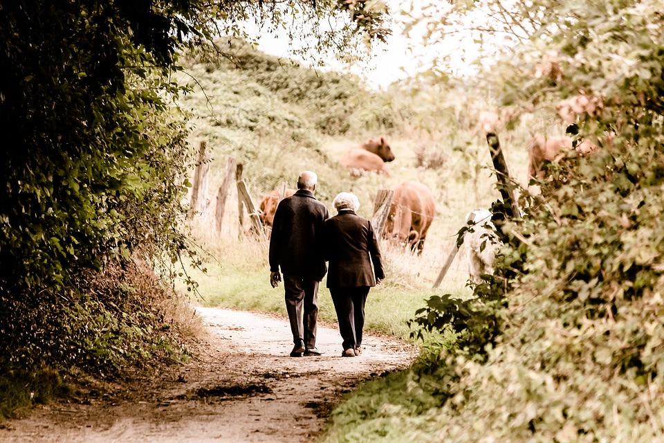 nyugdíj szolgálati évek száma